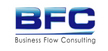 Business Flow Consulting